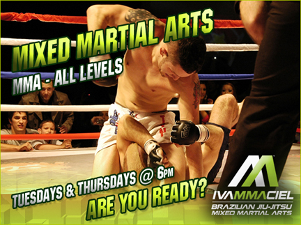 mma mixed martial arts brighton
